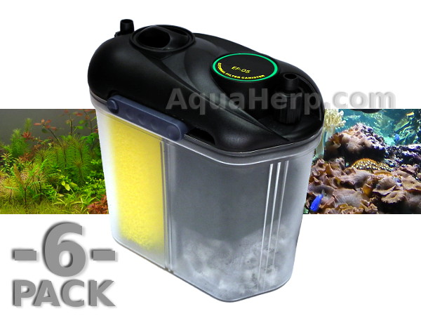 Small Aquarium Canister Filter 1000 Aquarium Ideas