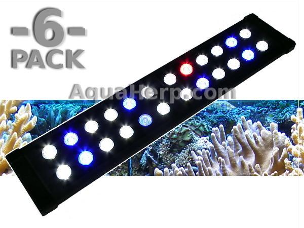 LED Aquarium Light Daylight-C REEF 50cm 20W / 6-PACK