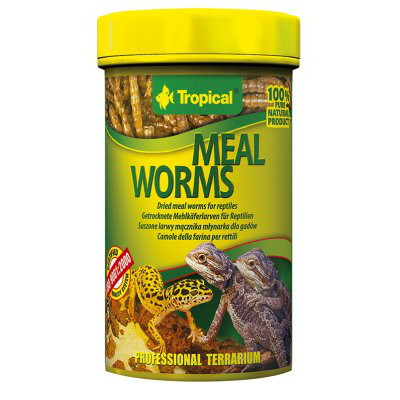 Tropical Mealworms 100ml