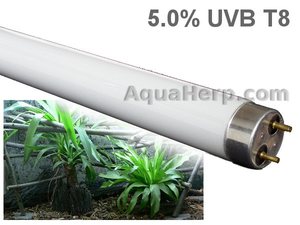 UV Light for Reptiles 5.0% UVB Fluorescent Tube T8- AquaHerp.com